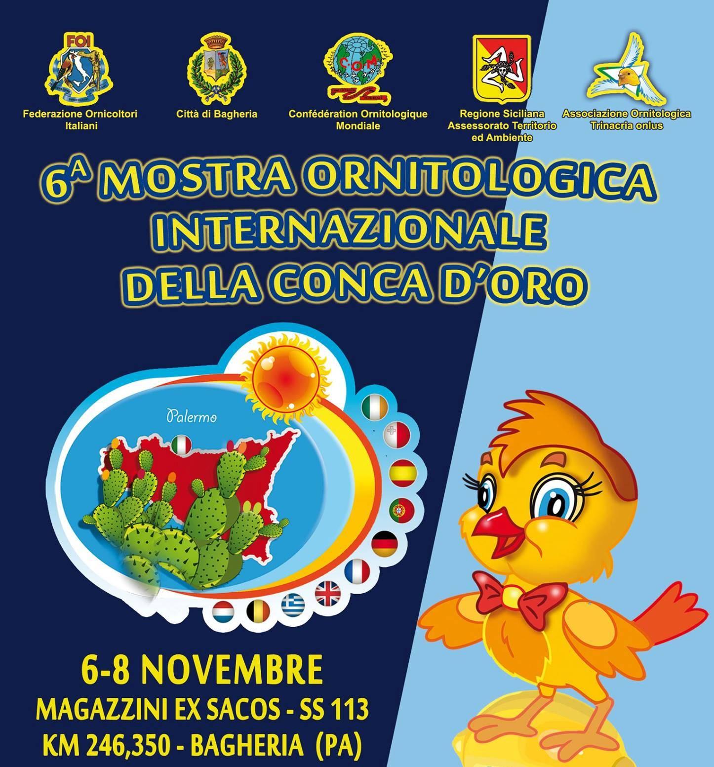 Calendario Mostre Ornitologiche 2019 Sicilia.Mostra Internazionale Ornitologica A Bagheria Iostudio