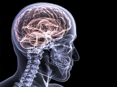 Foto tratta da medicalexpress.com
