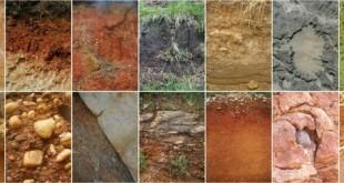 Foto tratta da soilerosion.eu