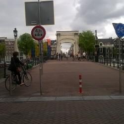 ponte am
