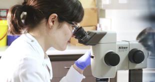 L'UE stanzia 621 milioni di euro per la ricerca d'avanguardia condotta da scienziati a inizio carriera
