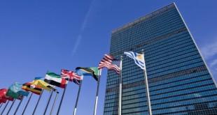 Fellowships Programme delle Nazioni Unite per tirocini