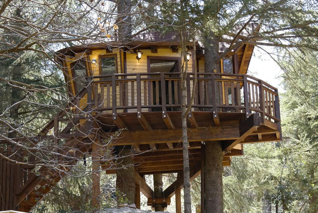 Foto della casa sull'albero dal sito del Parco Avventure Madonie
