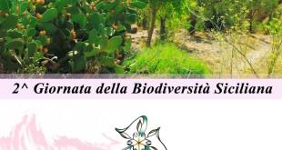 Biodiversità siciliana, sabato 10 febbraio una giornata ai cantieri Culturali della Zisa