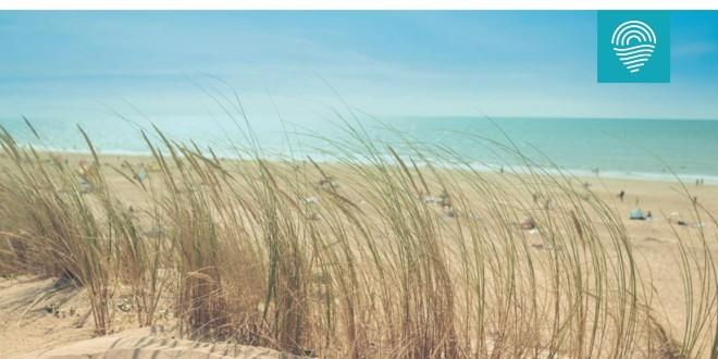 trovaspiagge.it