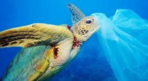#SICILIAPLASTICFREE: la Sicilia prima regione senza plastica