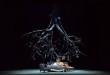 Falstaff Ronconi ©Carlo Cofano Teatro Petruzzelli DSC_3267