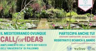 """Orto Botanico dell'Università di Palermo e Fondazione Radicepura   lanciano la call """"Il Mediterraneo, ovunque"""""""