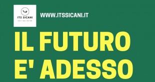 Experience Manager dell'Agroalimentare e Tecnici di Alta Specializzazione della filiera dell'Olio, al via il bando per i corsi di alta formazione della Fondazione ITS Sicani