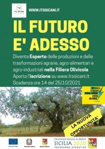 olivicolo per social (2)
